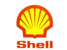 shell_0